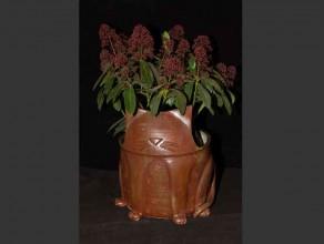 CPCh01 – Cache Pot chat